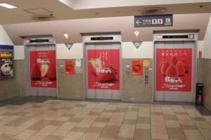 静岡県ブランドいちご「紅ほっぺ」スイーツフェア